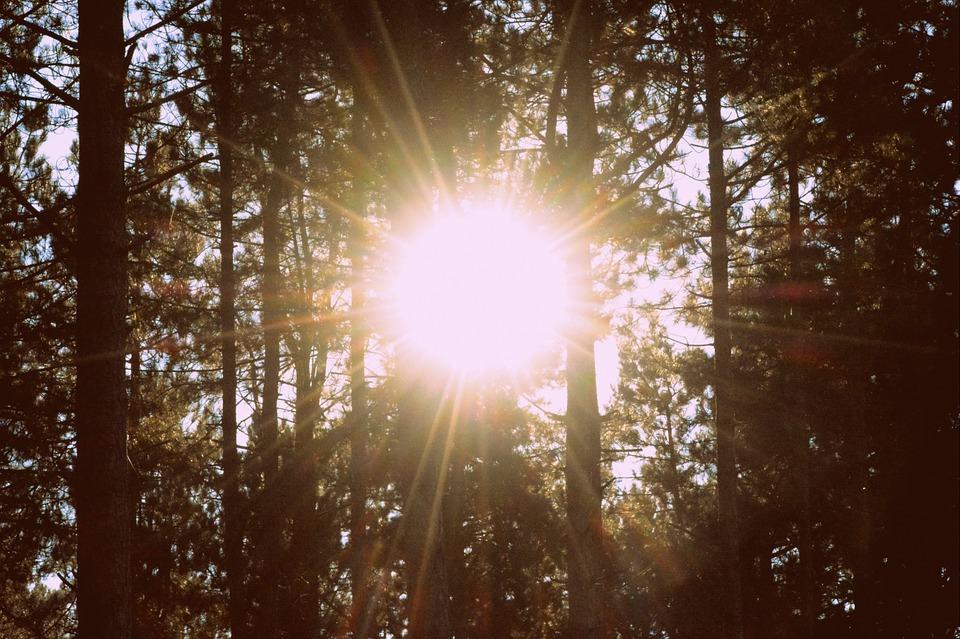 sun dazzle